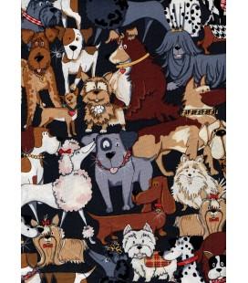 Animales. Perros