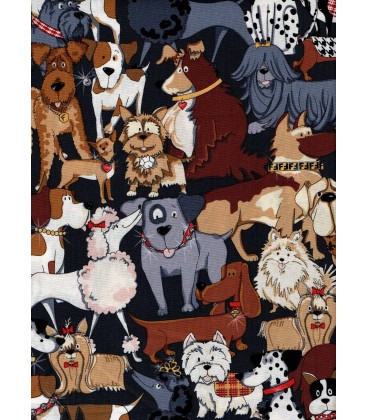 Animals. Dogs