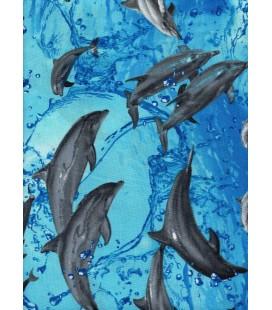 Animales. Delfines