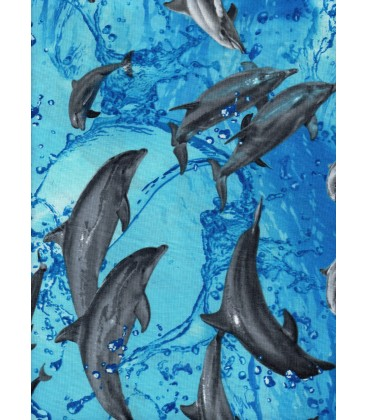 The animals. The dolphins