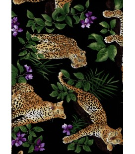 Animales. Leopardos